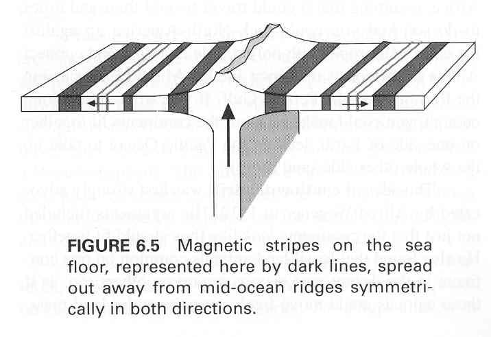 Evidence For Plate Tectonics Magnetic Stripesof The Sea